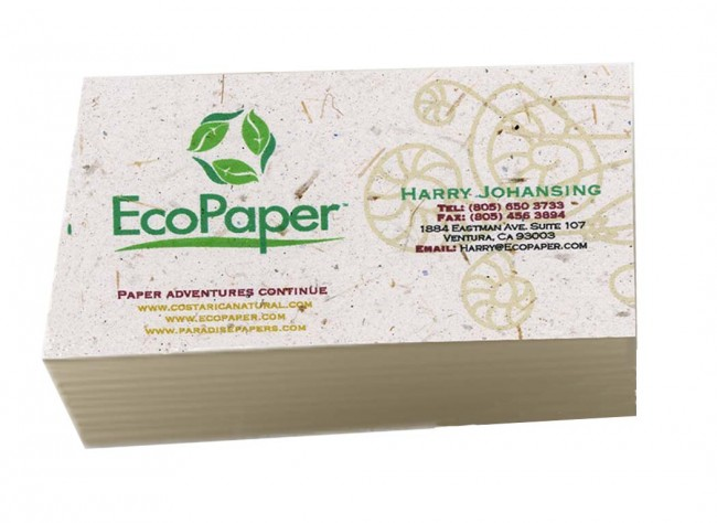 250 Eco Friendly Business Cards - Recycled Organic Banana Paper
