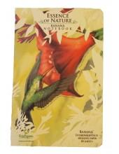 Hummingbird tree free paper
