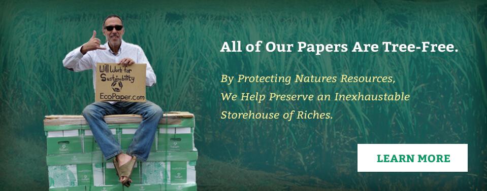 Sugar Cane Paper